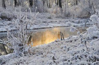 Февраль в Украине будет морозным / pixabay