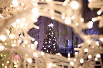 Сколько потратили на оформление Офиса президента к Новому году / president.gov.ua