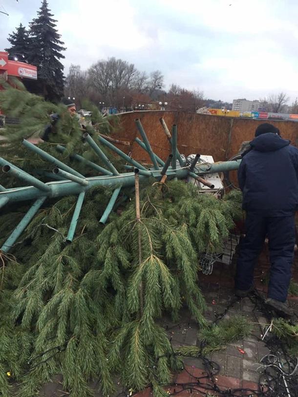 В Каневе рухнула главная елка города