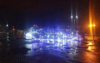 В Каневе упала главная елка города
