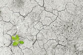 Как в Украине изменился климат / pixabay