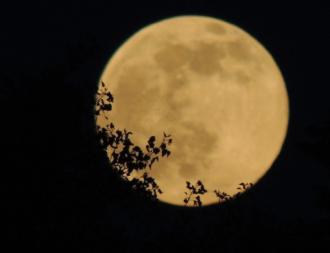 В конце февраля ожидаются самые мощные сутки – Подробный лунный календарь февраль 2021