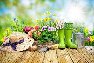 Посевной календарь на май 2021 Украина по дням