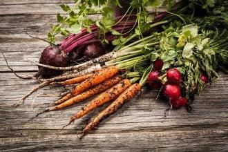 місячний посівний календар-сад-город-чоботи-овочі-рослини-городник-садівник