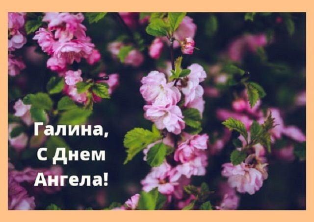 з днем ангела Галина картинки листівки