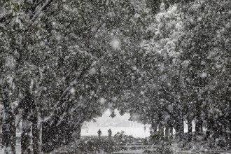 Синоптик Диденко дала прогноз на 5 марта Пойдет снег и похолодает