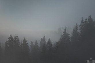 Карпаты,туман