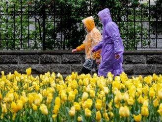 Синоптик Погода в Украине изменится из-за антициклона Jacqueline