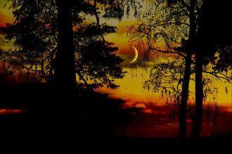 Погорельченко предупредила, что в новую фазу Луны будет много иллюзий