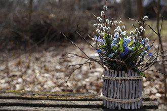 Синоптик Погода в Україні 29 квітня обіцяє потепління