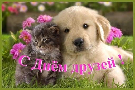 Красивые картинки о дружбе и любви