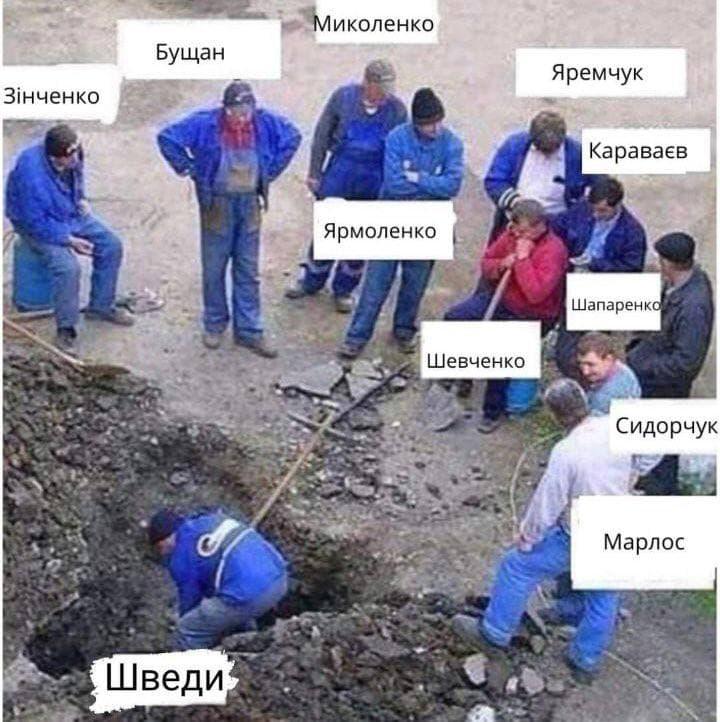 """В Сети радуются """"победе"""" сборной Украины матче Швеции и Польши"""