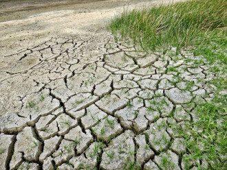 жара, засуха, климат