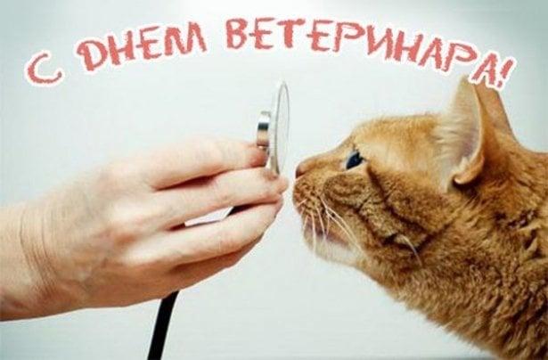 День ветеринара в Украине 2021: картинки, открытки