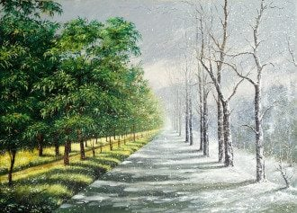 климат, изменения климата