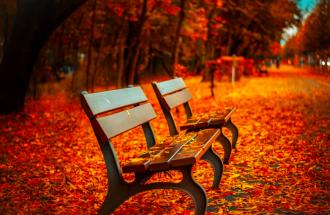 осінь, погода