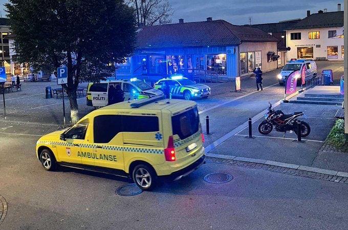 В Норвегии людей застрелили из лука