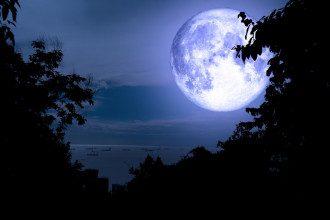 Лунный гороскоп на неделю